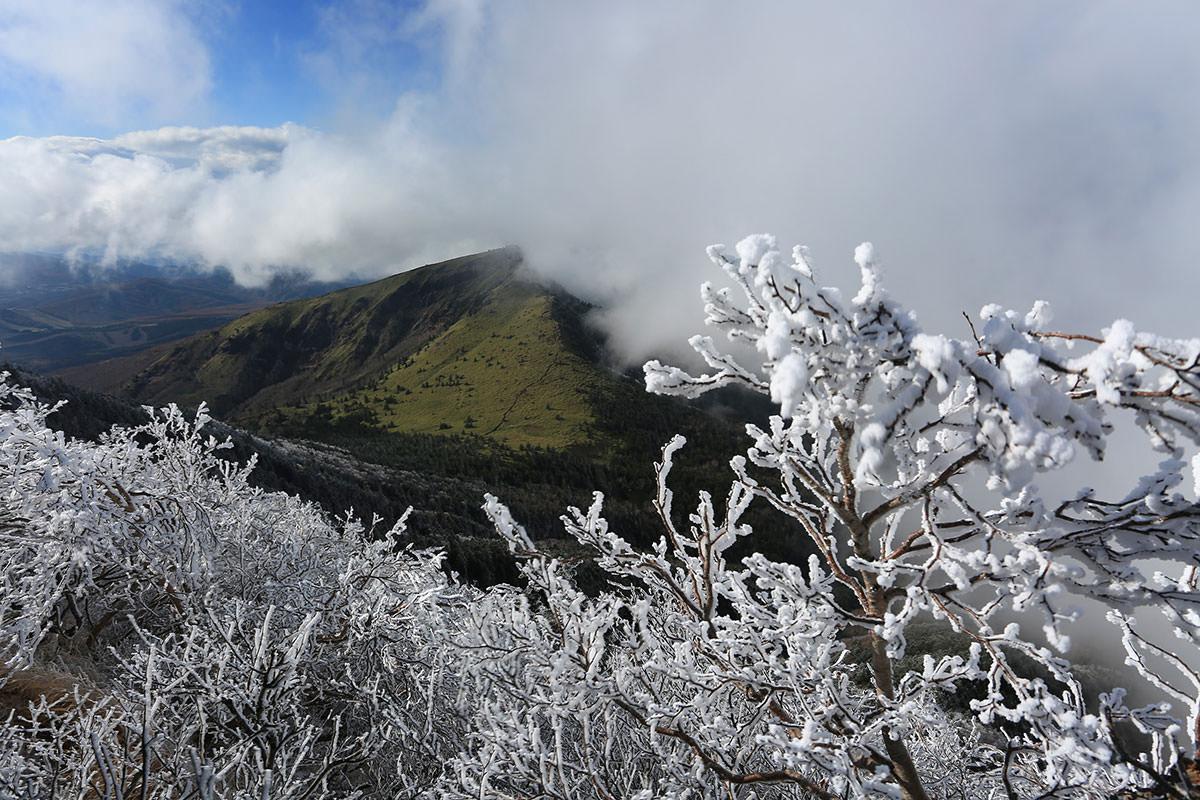 【四阿山】登山百景-霧氷真っ白