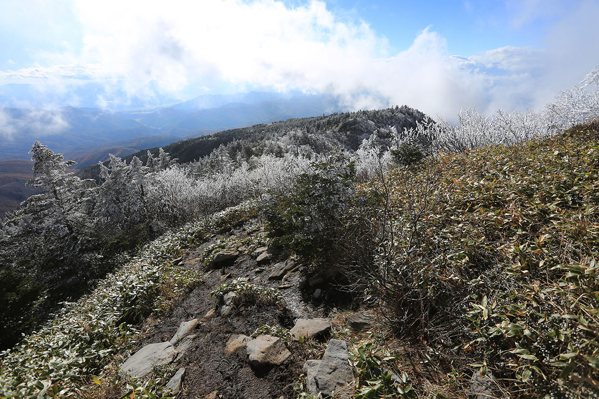 【四阿山】登山百景-山頂下の階段から