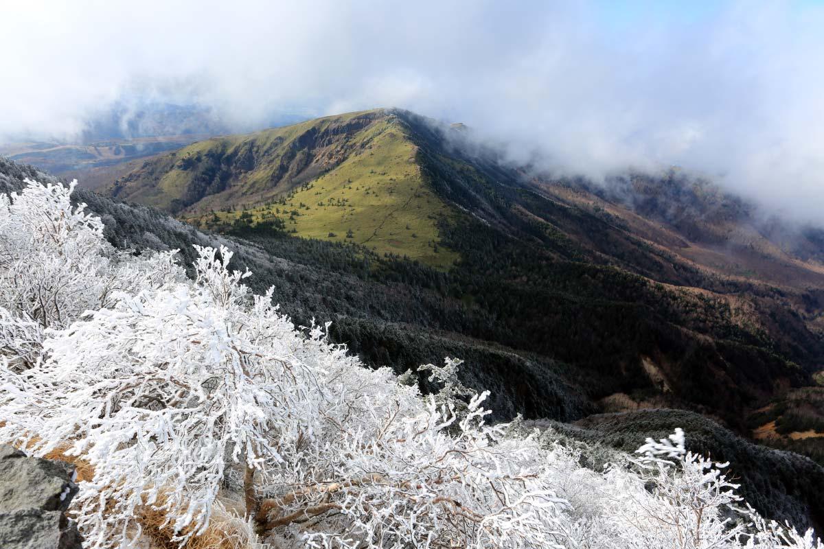 四阿山から見える霧氷