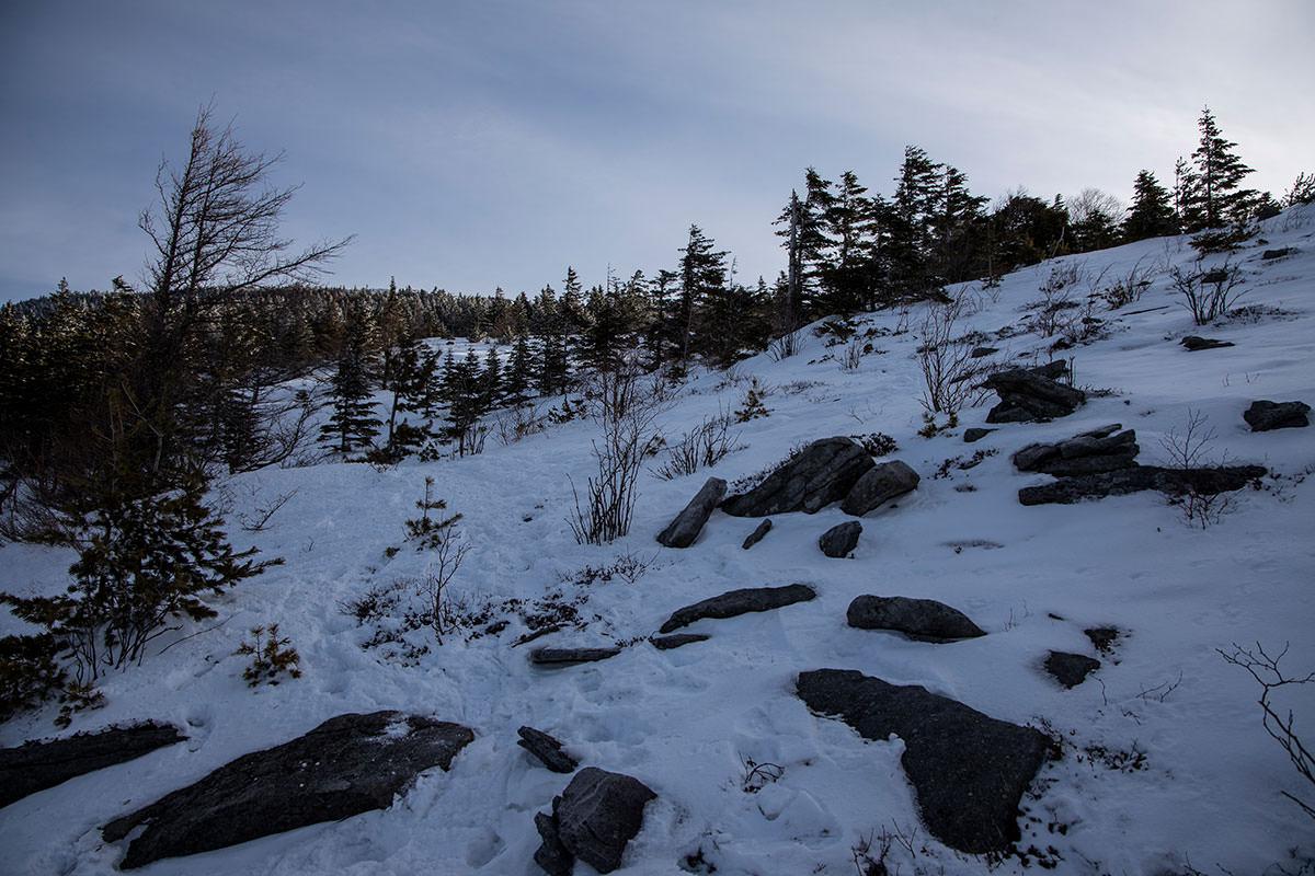 雪から石が出ているのも目立つ