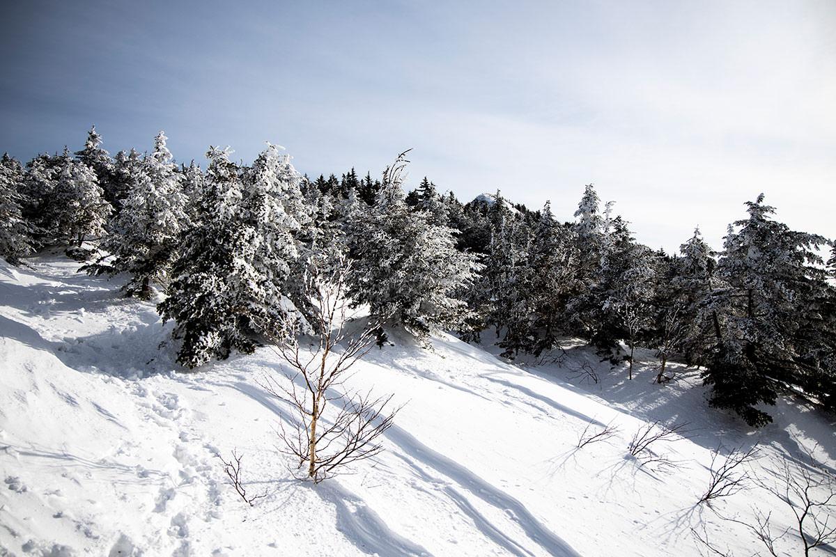 このあたりは新雪を踏む感触