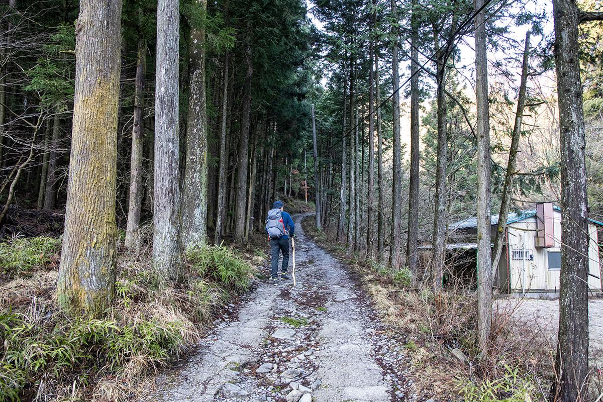 登山道へ入っていく