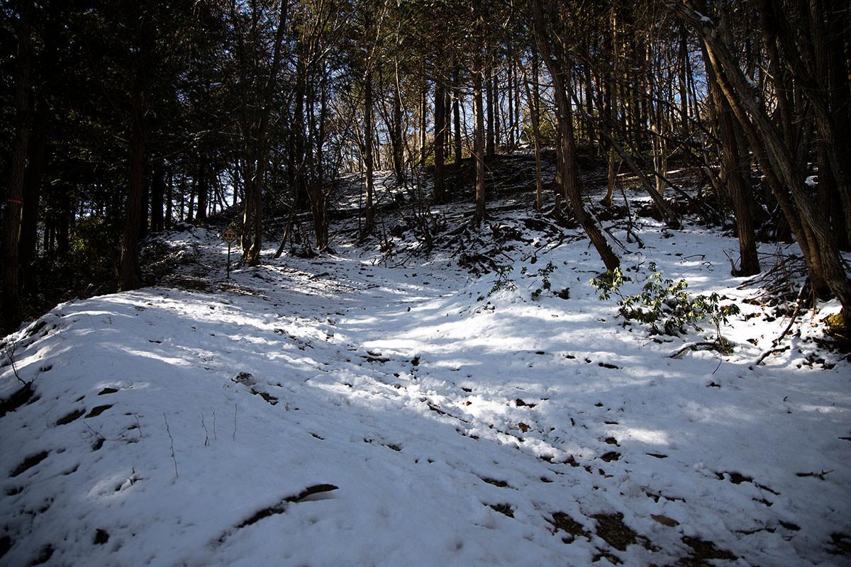 林道のような広い道に出た