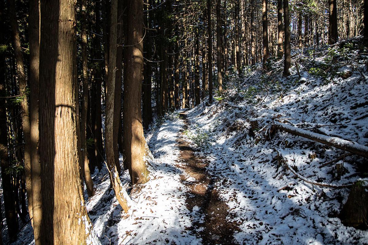 登山道へ戻って平坦