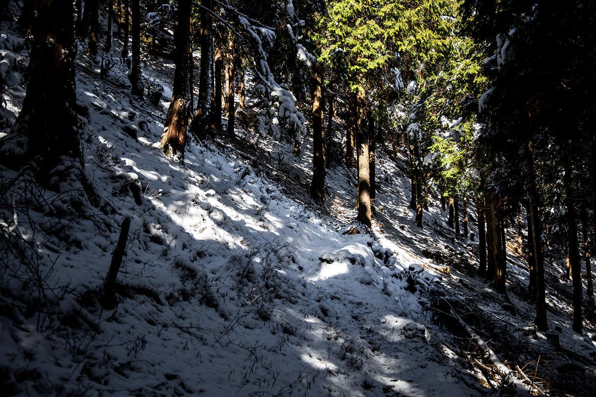 斜面を歩いていく狭い登山道