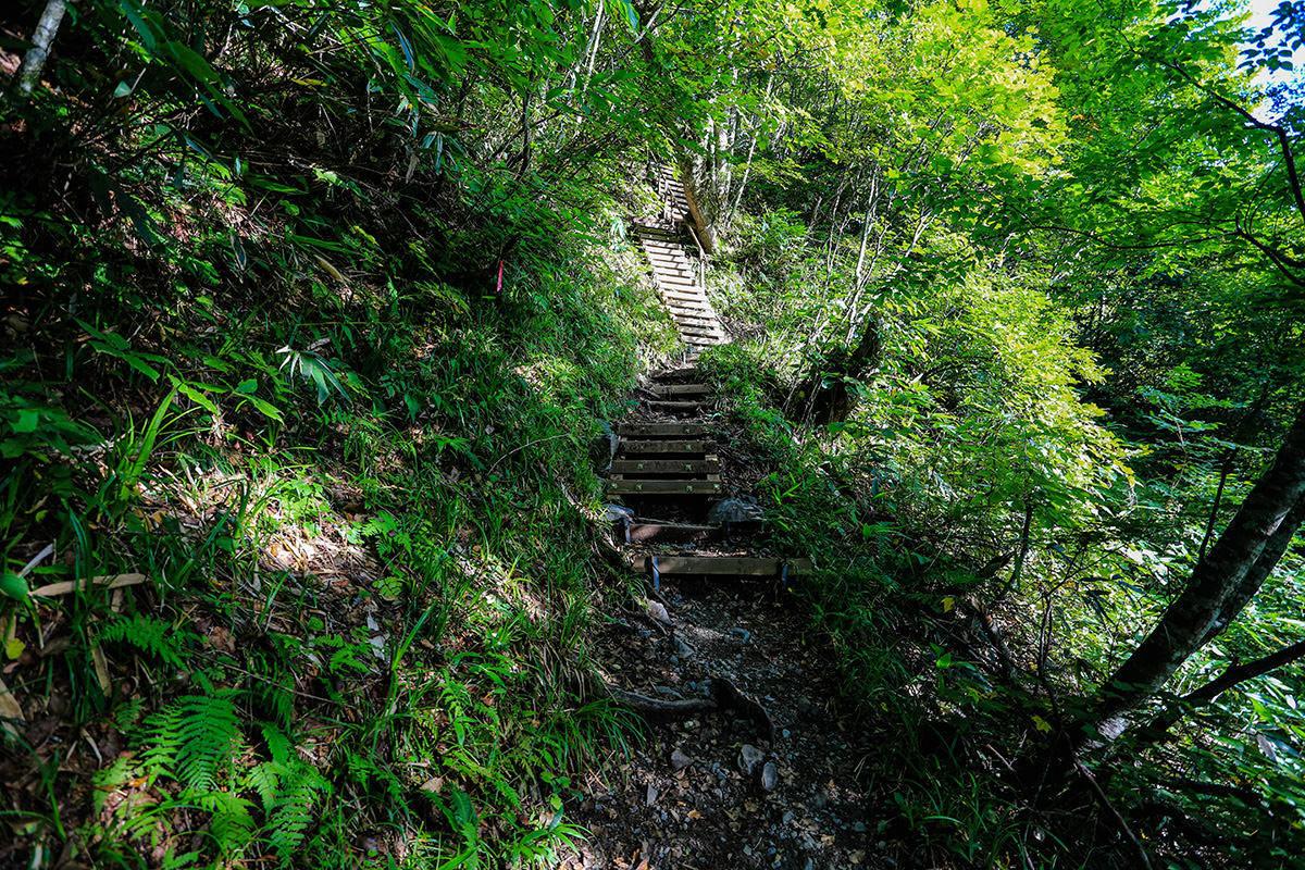 【蝶ヶ岳】登山百景-階段多め