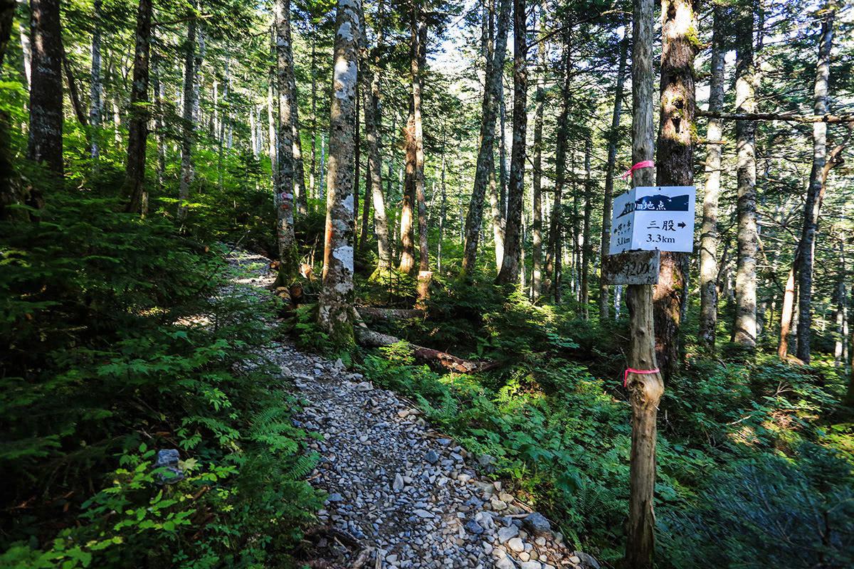 【蝶ヶ岳】登山百景-だいたい行程の半分