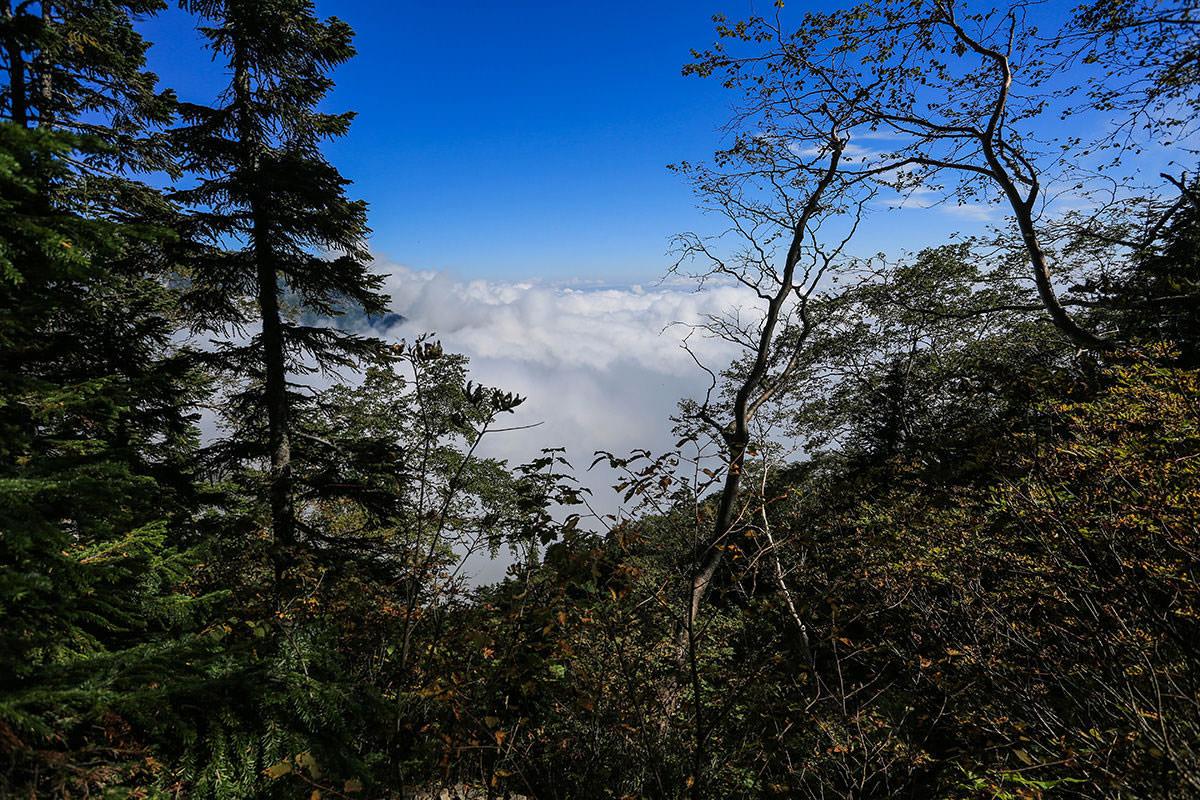 【蝶ヶ岳】登山百景-雲海を見下ろす
