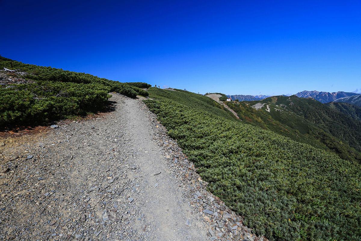 【蝶ヶ岳】登山百景-山頂の稜線に出た