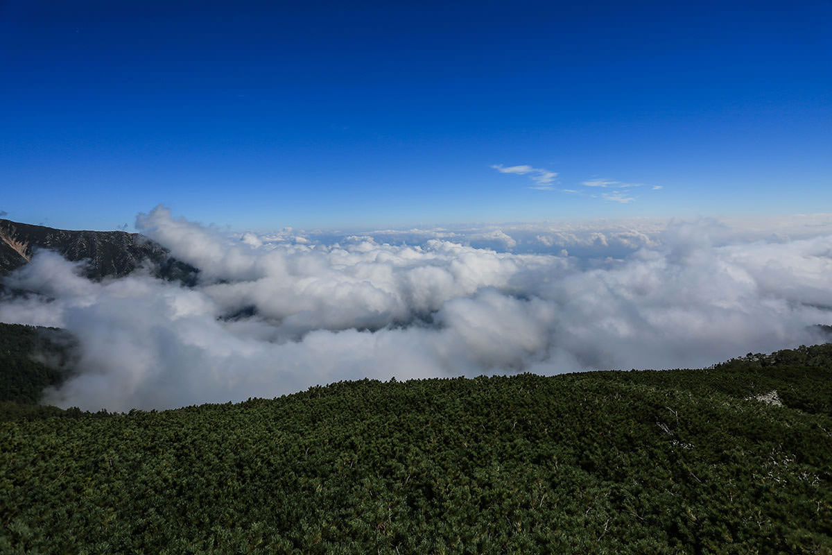 【蝶ヶ岳】登山百景-東側は雲海