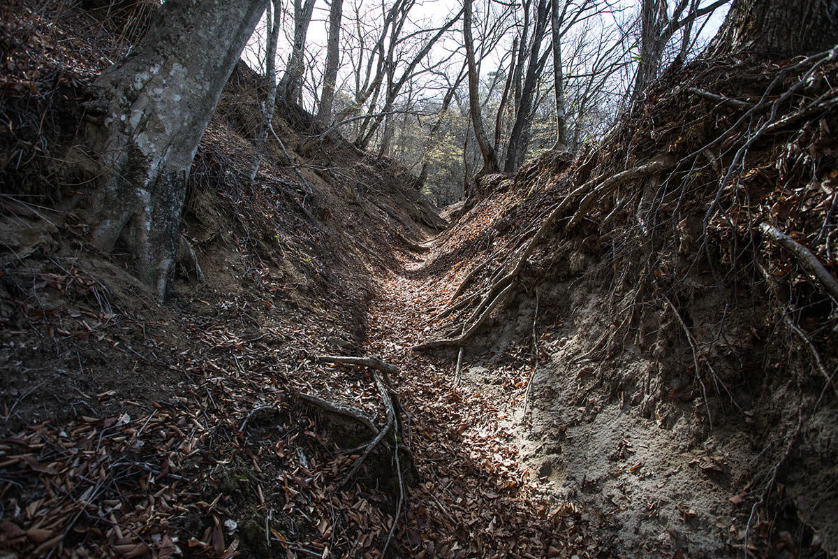 【大菩薩嶺 丸川峠分岐】登山百景-両側の土が高い