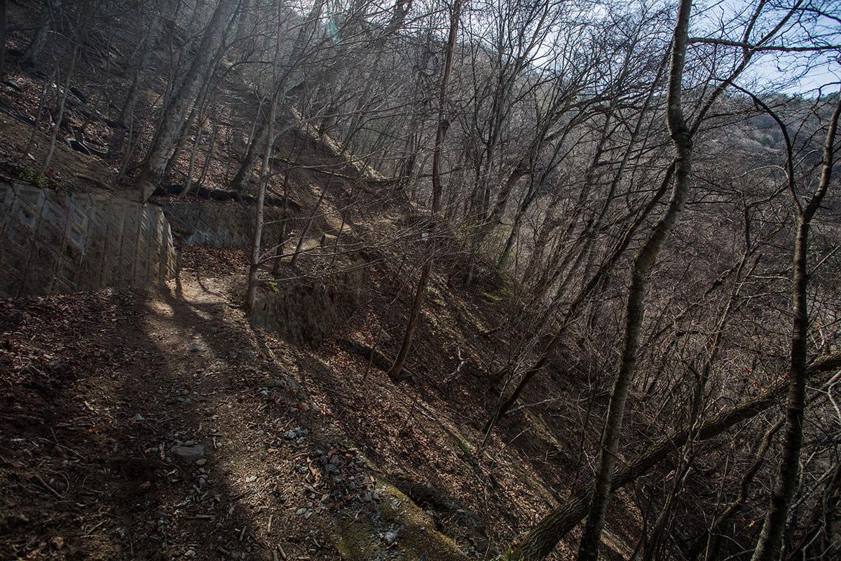 【大菩薩嶺 丸川峠分岐】登山百景-上日川峠が近い雰囲気