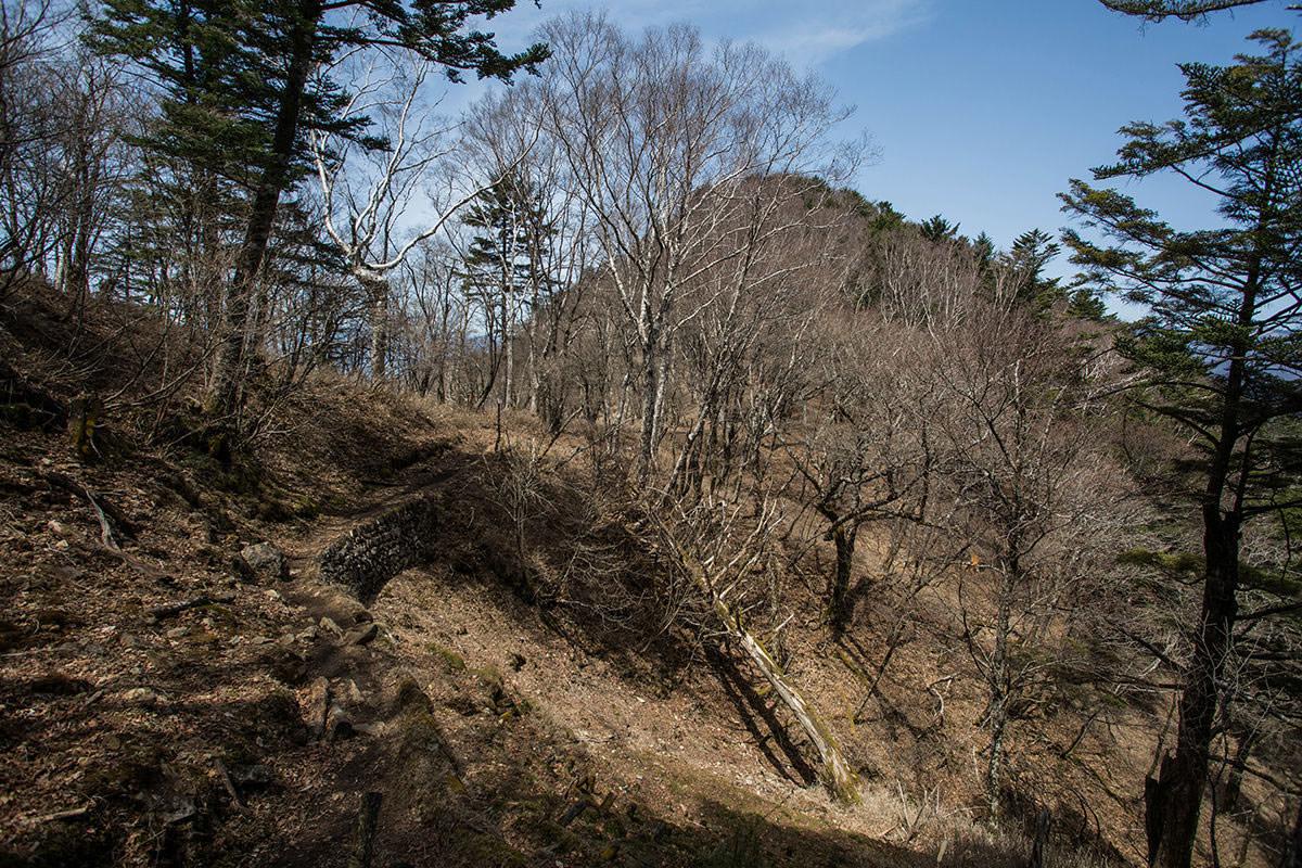【大菩薩嶺 丸川峠分岐】登山百景-あの山を巻いて下りる