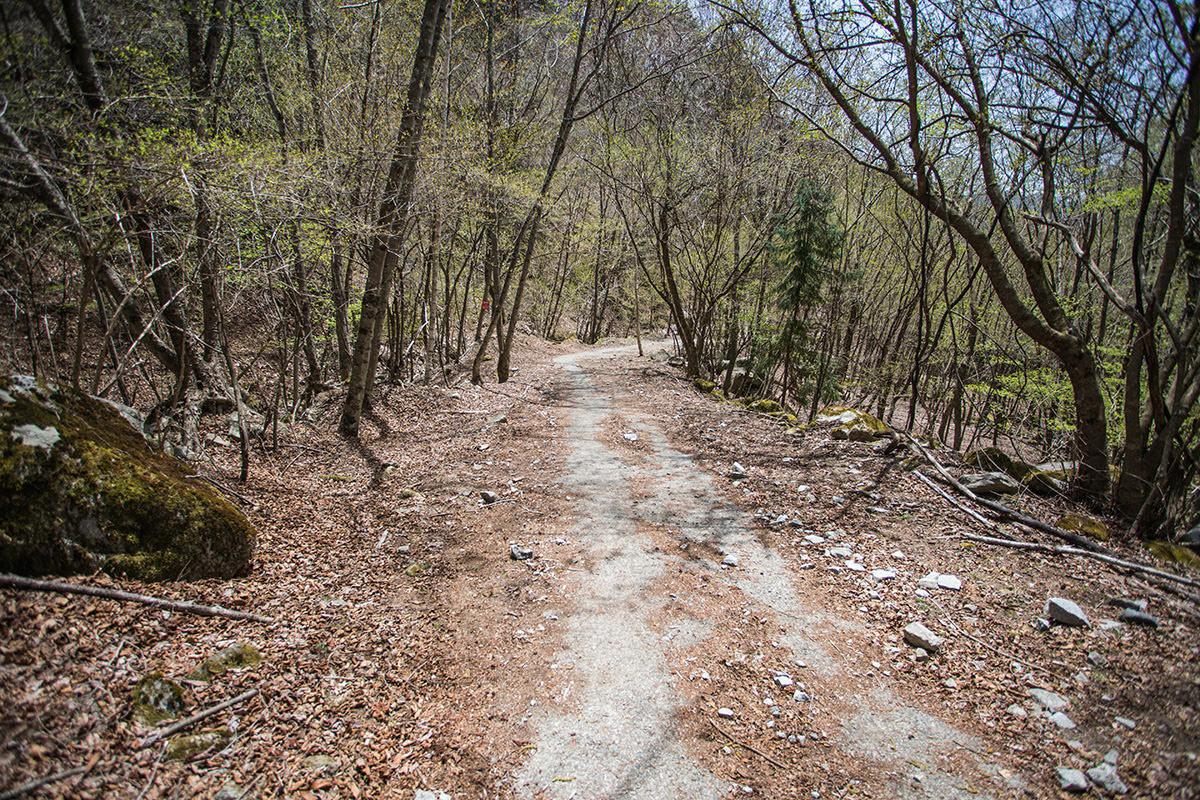 【大菩薩嶺 丸川峠分岐】登山百景-右へ下りると林道