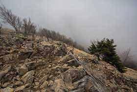 雷岩から大菩薩峠側の眺め