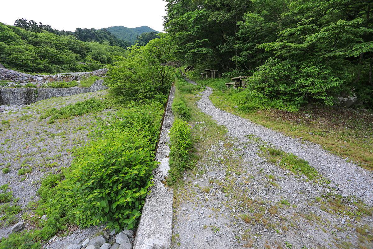 【大山 夏山登山道】登山百景-川の横を歩いて行く