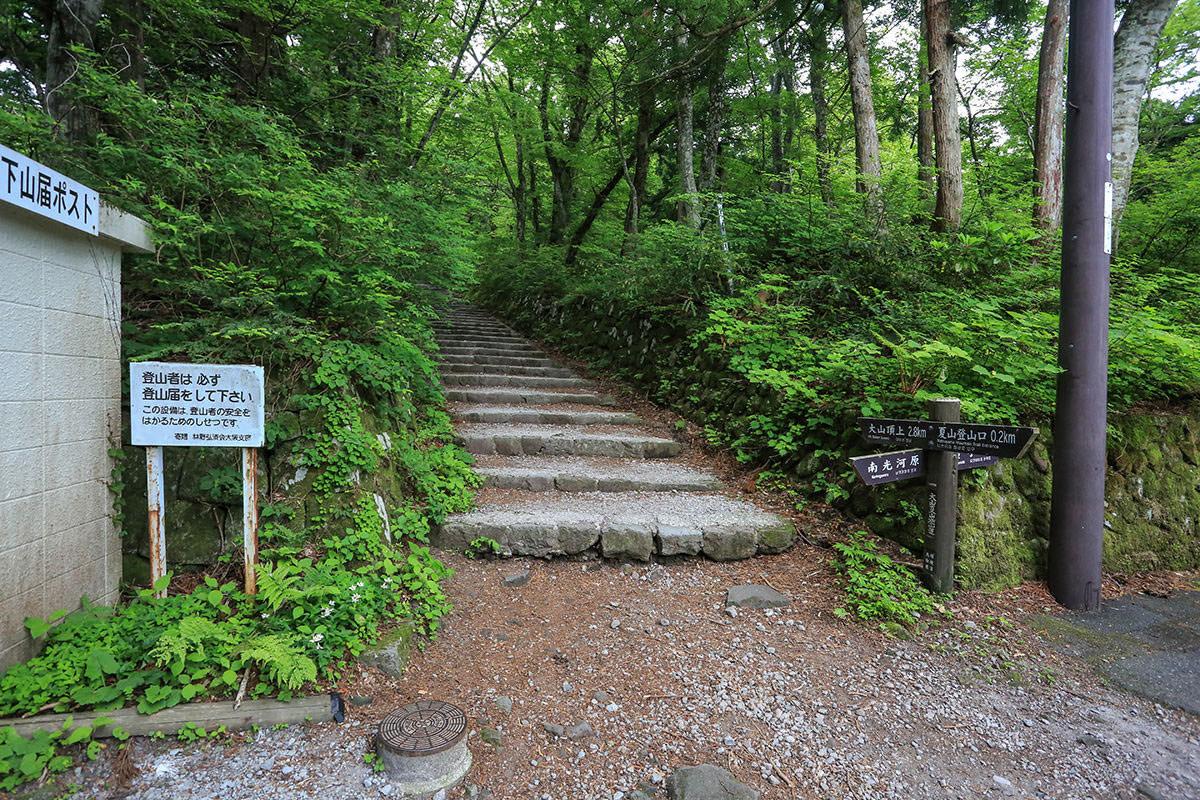 【大山 夏山登山道】登山百景-登山道と合流