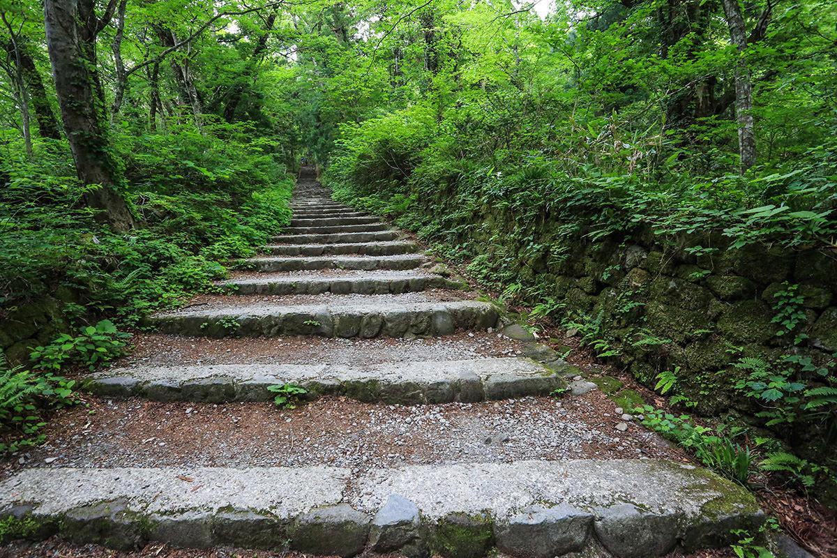 【大山 夏山登山道】登山百景-延々と階段が続く