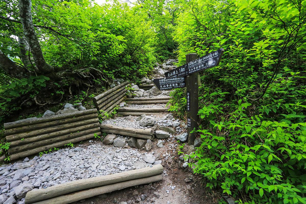 【大山 夏山登山道】登山百景-大神山神社からの分岐