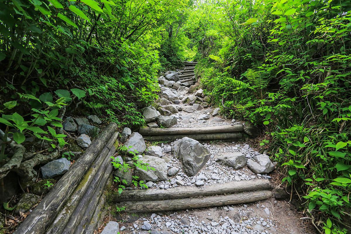 【大山 夏山登山道】登山百景-石が増えてきた