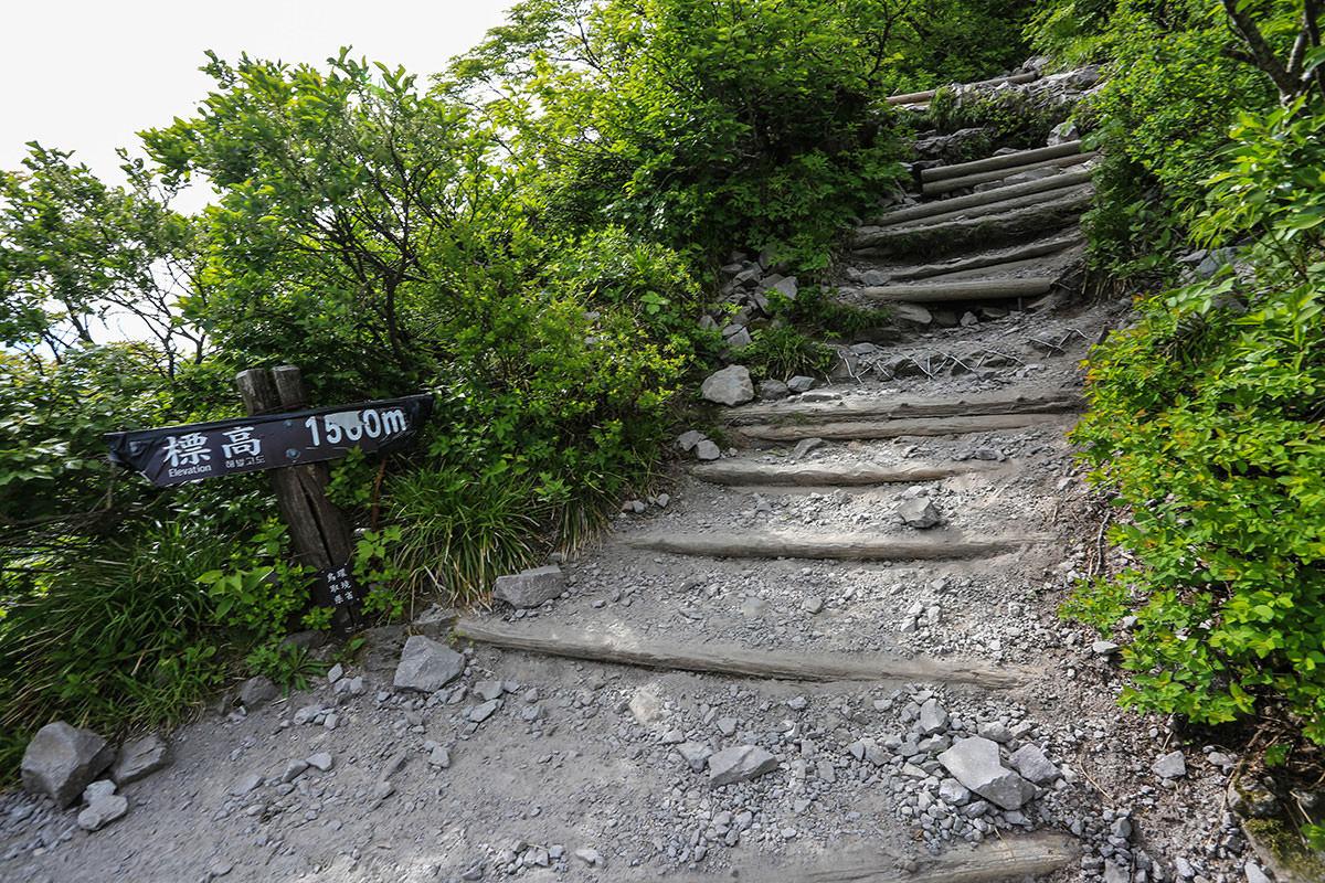 【大山 夏山登山道】登山百景-石と階段の登山道
