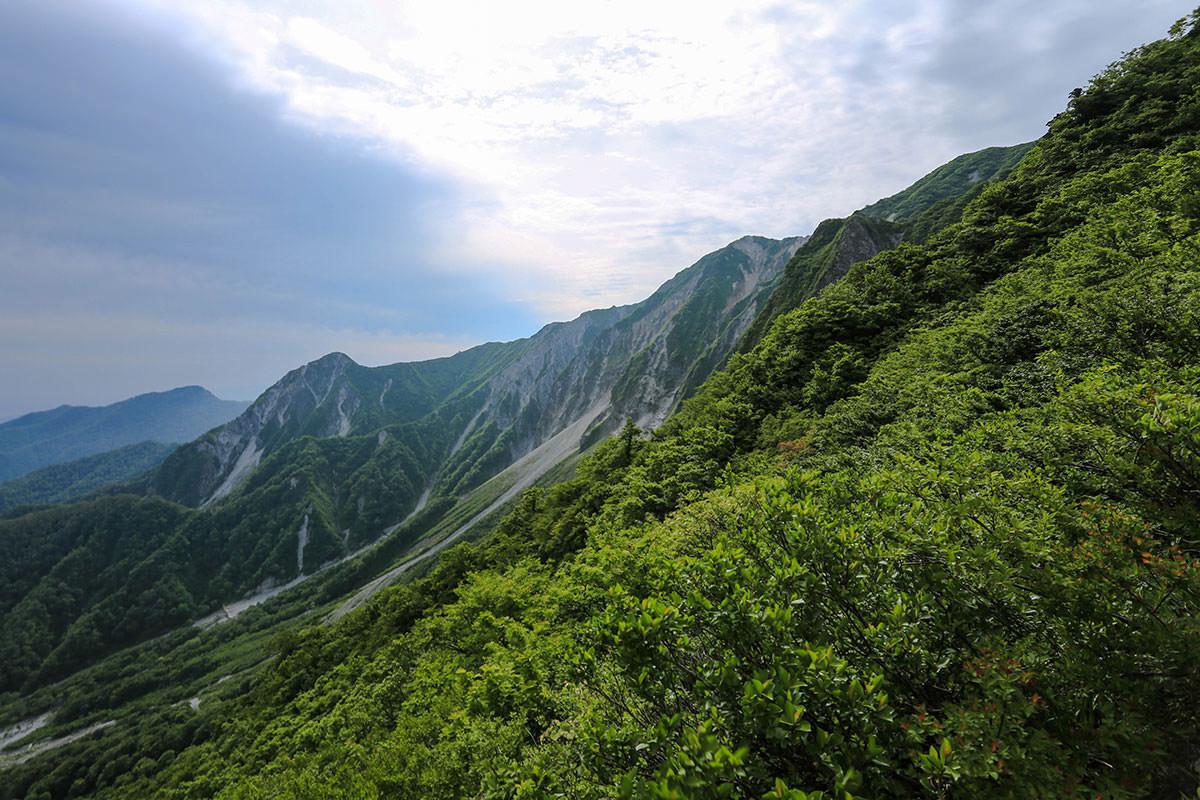 【大山 夏山登山道】登山百景-稜線が少し近づいた