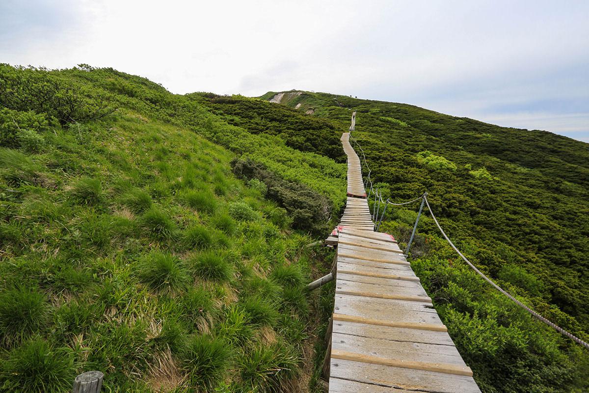 【大山 夏山登山道】登山百景-木道を登っていく