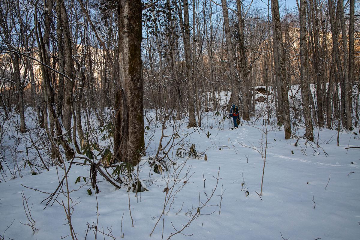 林の中はズボズボ