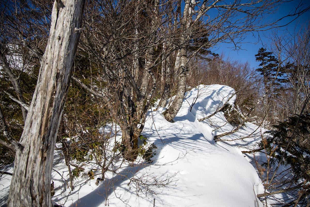 高妻山-雪でお辞儀している木もある