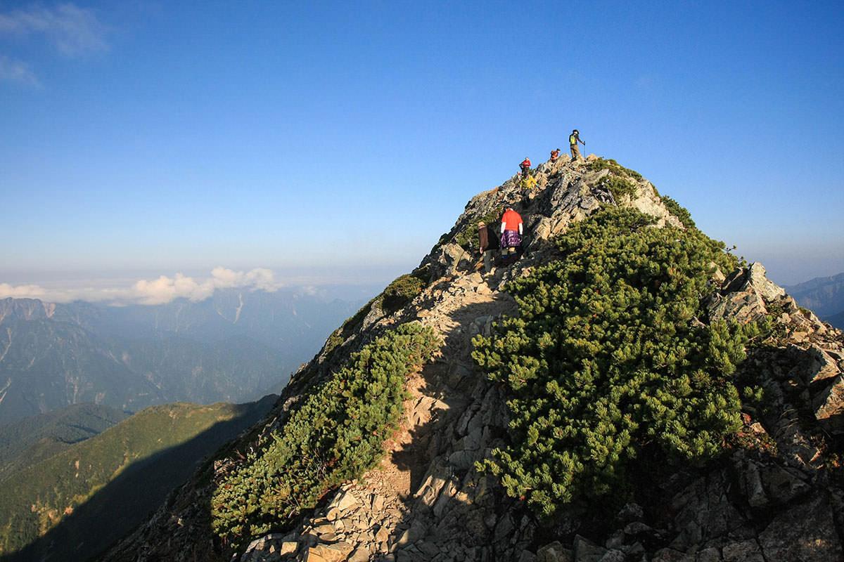 山頂へは分岐の向こう