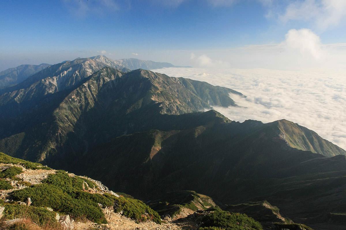 山頂手前から唐松岳