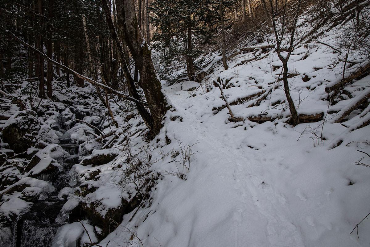 こんな景色の登山道が続く