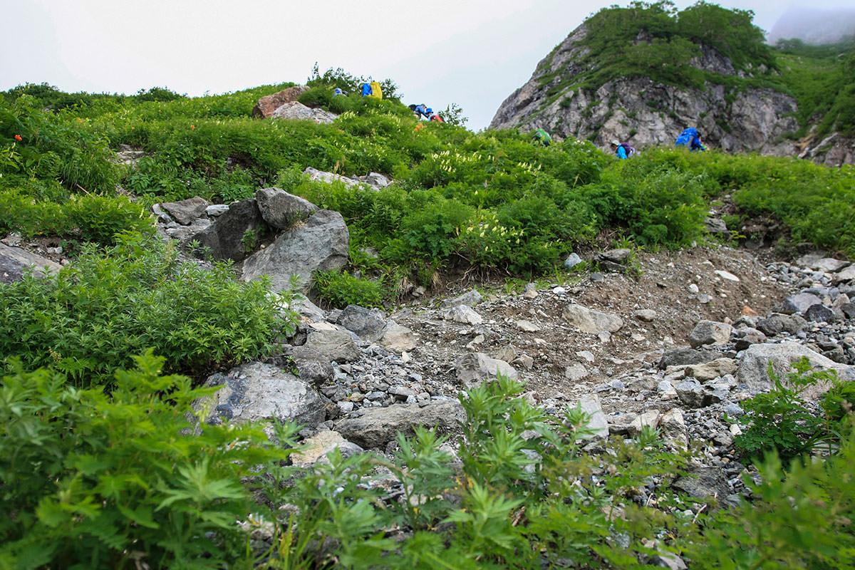 緑の岩場をくねくね登る
