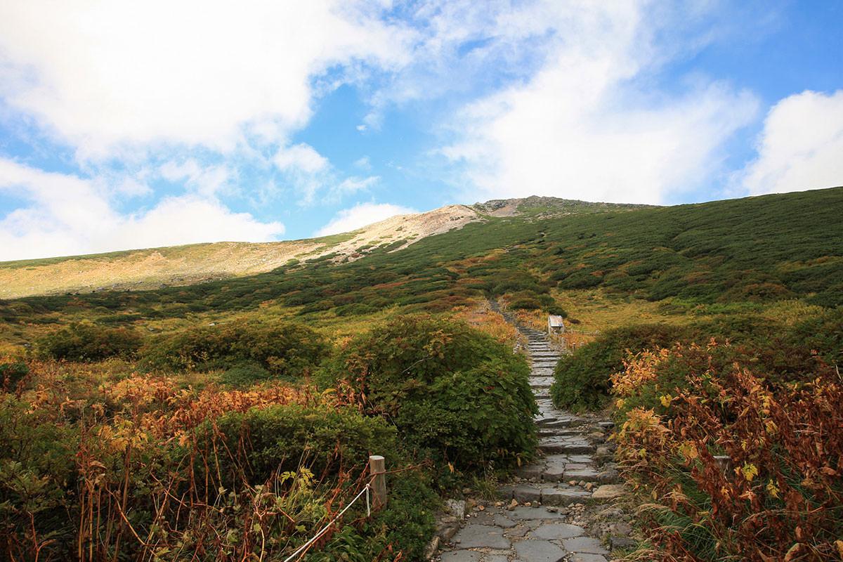 神社の脇に山頂への道