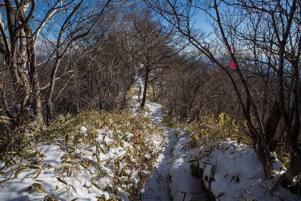 【鼻曲山】登山百景-山頂へ