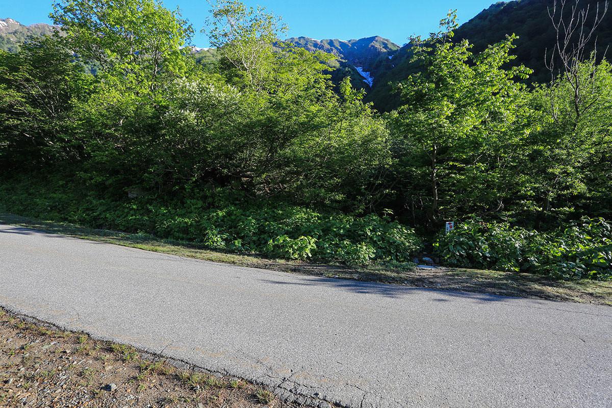 【針ノ木岳】登山百景-登山道はアスファルトを横断する