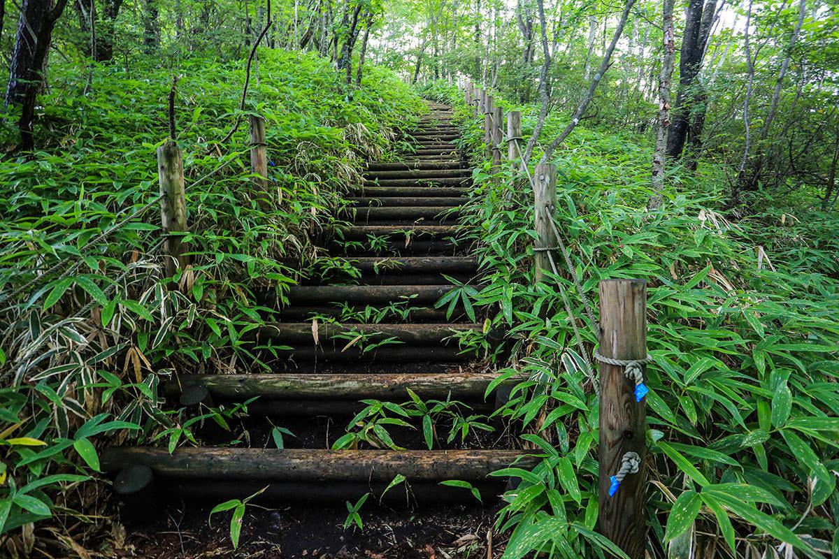 【榛名山】登山百景-階段始まり