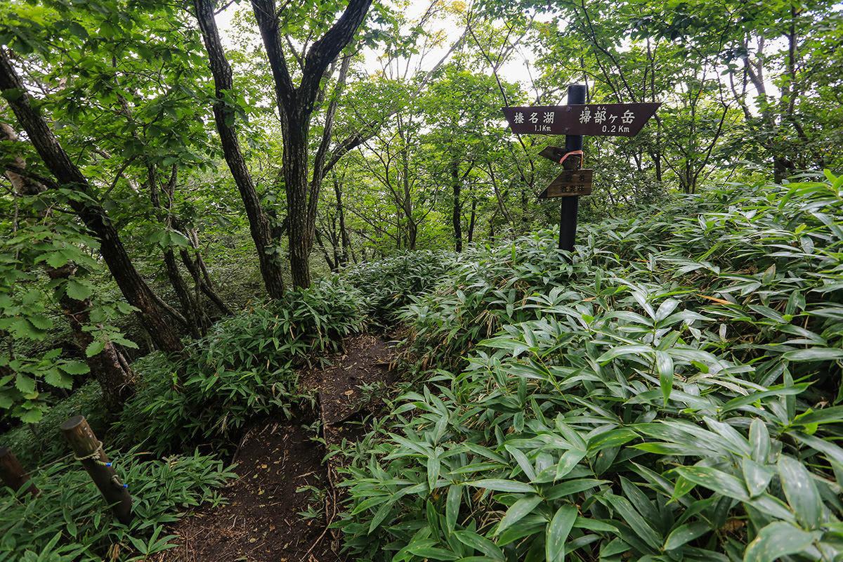 【榛名山】登山百景-下山は右へ