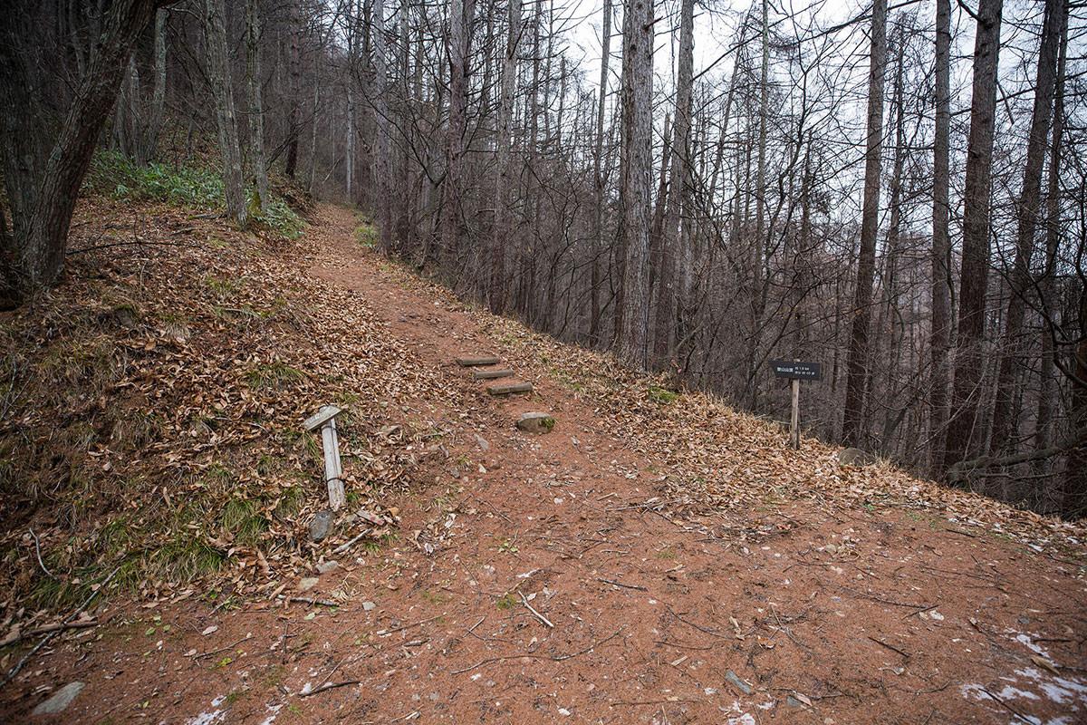 【聖山】登山百景-ここから山道