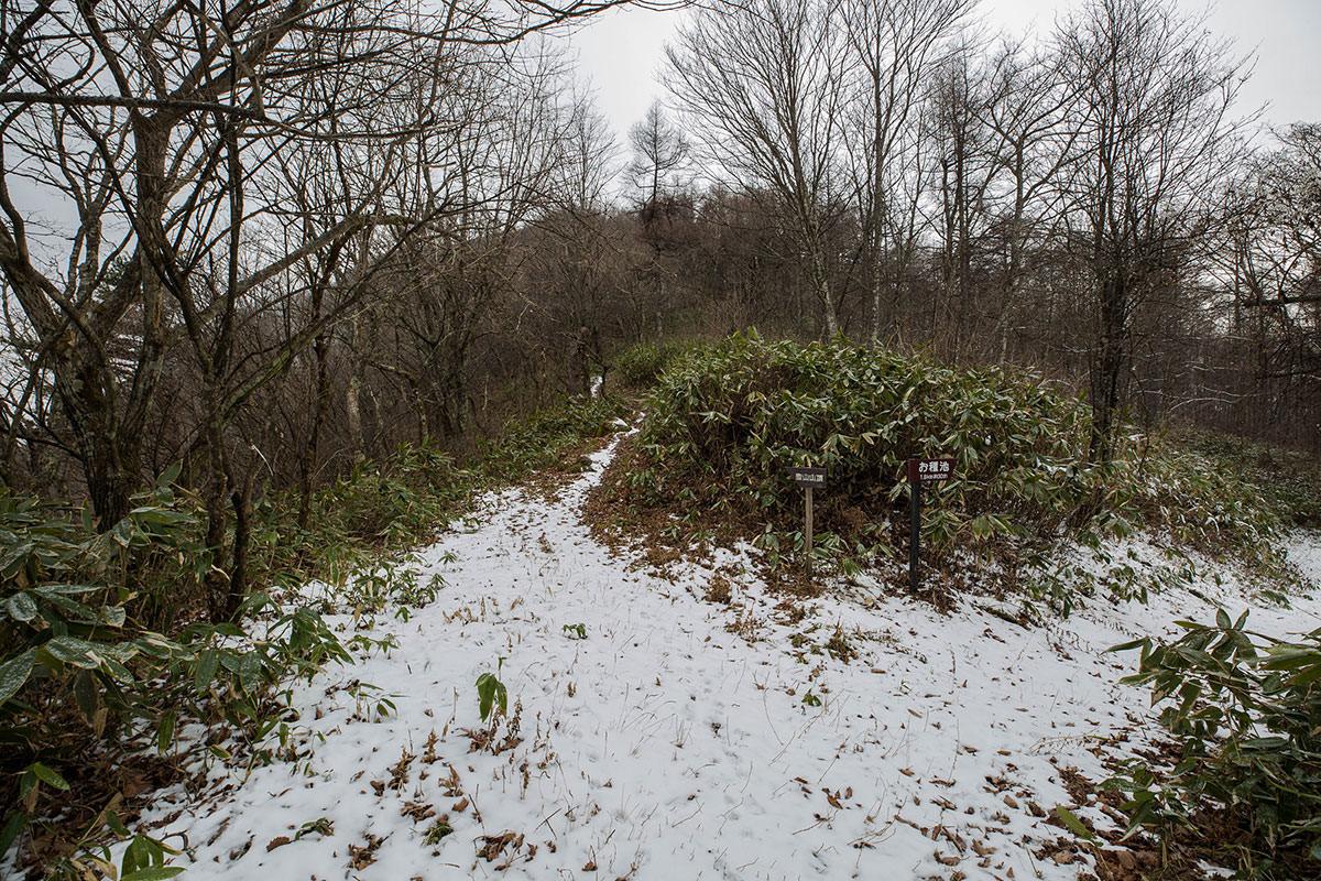 【聖山】登山百景-尾根上は雪