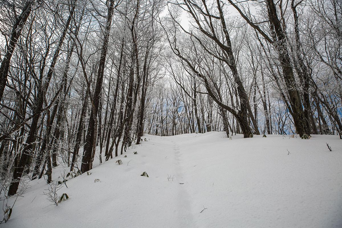 【聖山】登山百景-坂道を登っていく