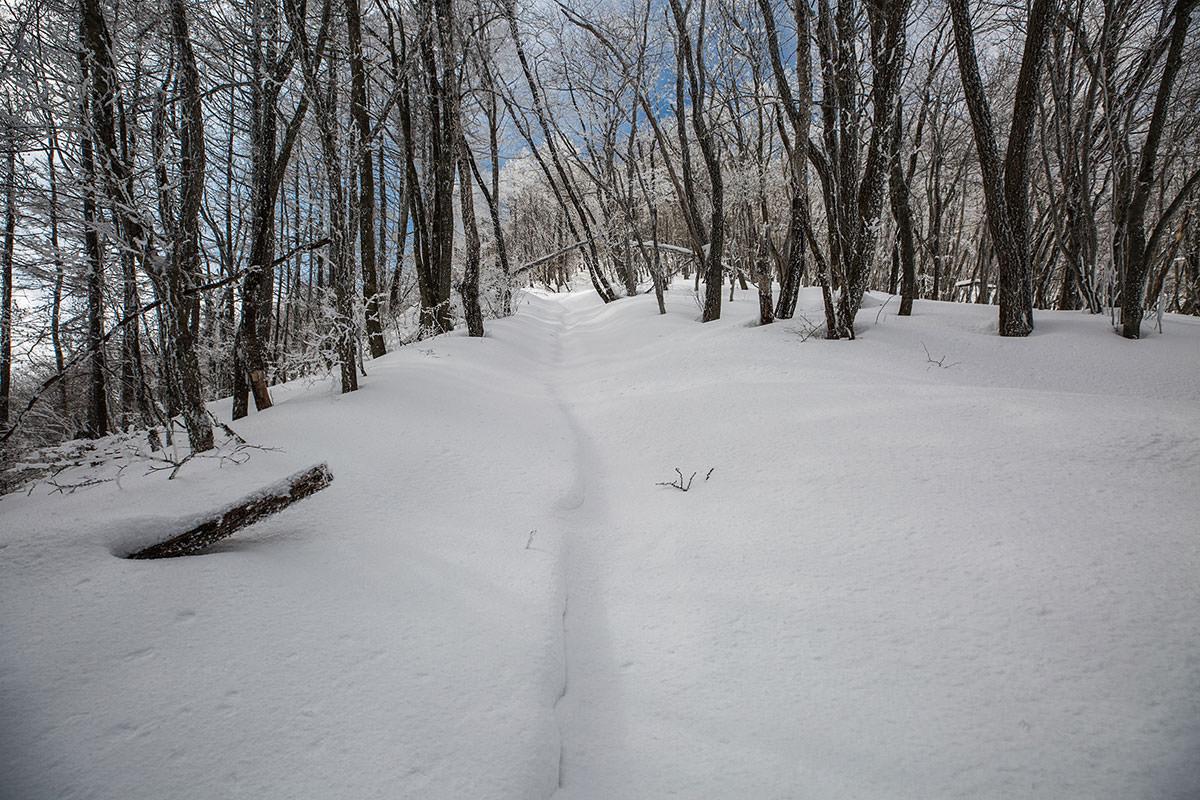 急な雪道を登っていく