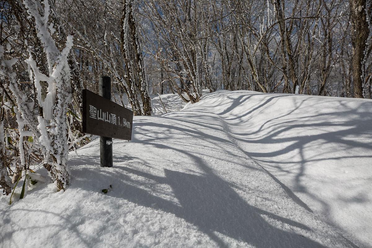 【聖山】登山百景-急登終わり