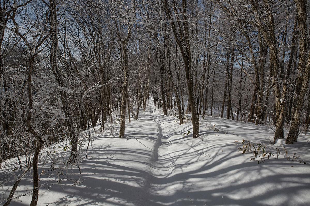 【聖山】登山百景-尾根は穏やかな道