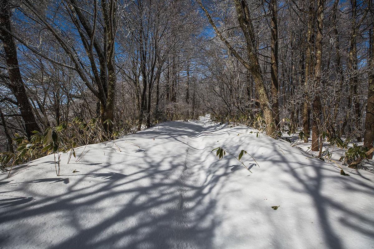 【聖山】登山百景-霧氷が減ってきた