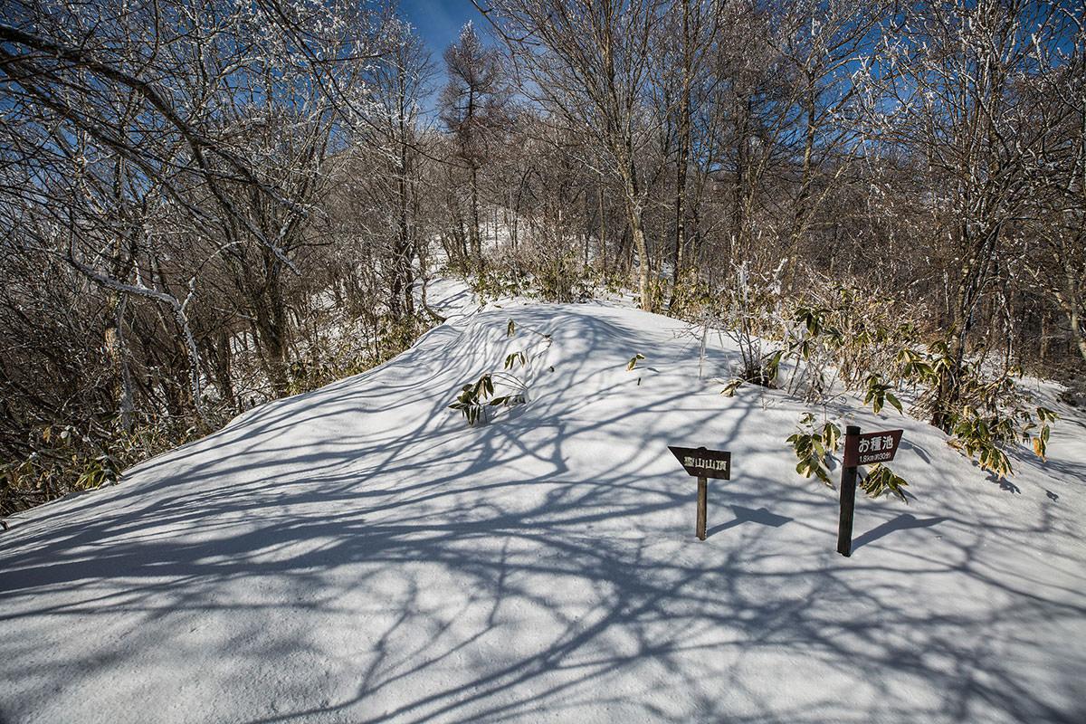 【聖山】登山百景-ここからまた登り坂