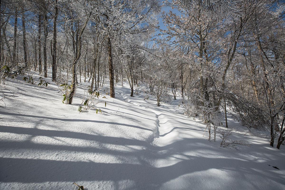 【聖山】登山百景-雪が軽くなる