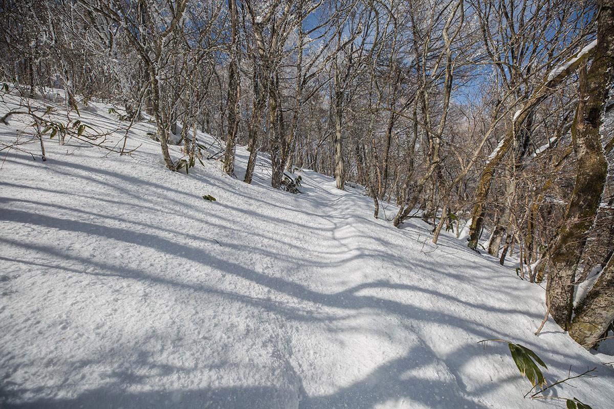 【聖山】登山百景-雪の上には散った霧氷