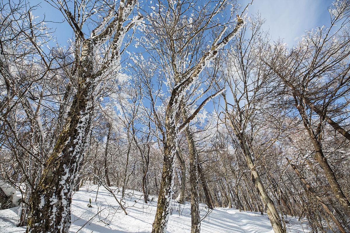 【聖山】登山百景-晴れた空は気持ちが良い