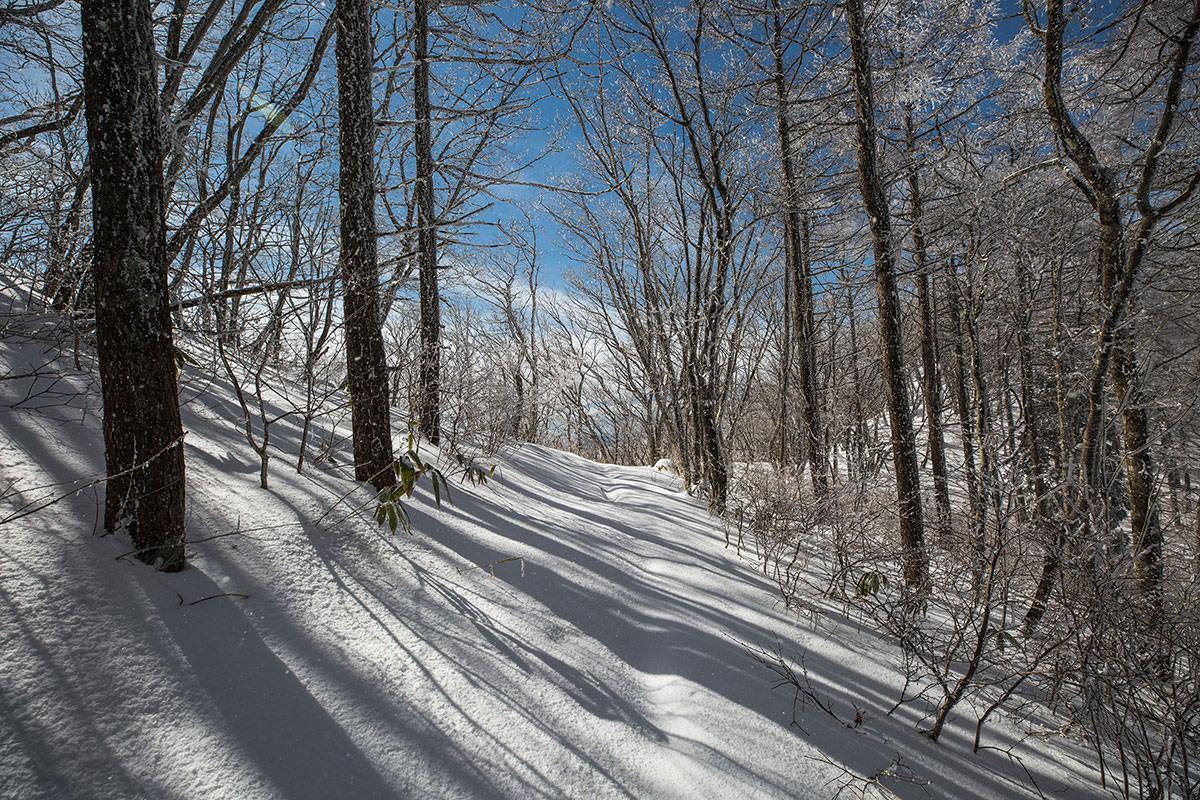 【聖山】登山百景-雪が深い